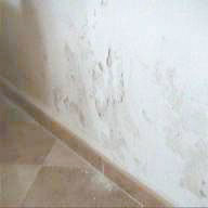 Damp Proofing Almeria Rising Damp